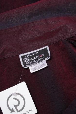 Γυναικείο πουκάμισο Ladies