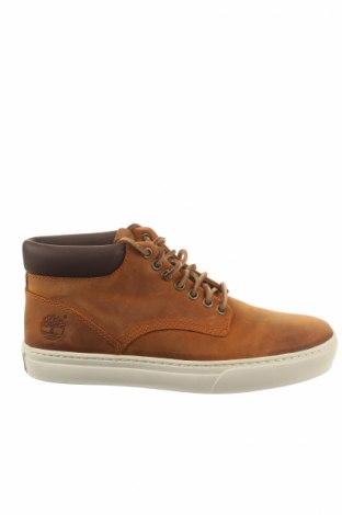 Pánske topánky Timberland