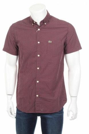 Мъжка риза Lacoste, Размер M, Цвят Лилав, Памук, Цена 43,68лв.