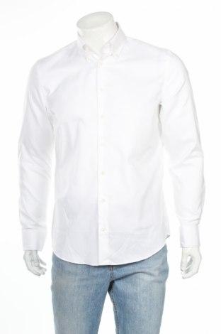 Męska koszula Montego, Rozmiar L, Kolor Biały, Bawełna, Cena 67,50zł