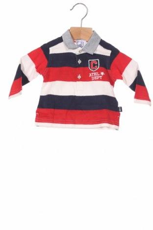 Детска блуза Chicco, Размер 3-6m/ 62-68 см, Цвят Многоцветен, Памук, Цена 12,54лв.