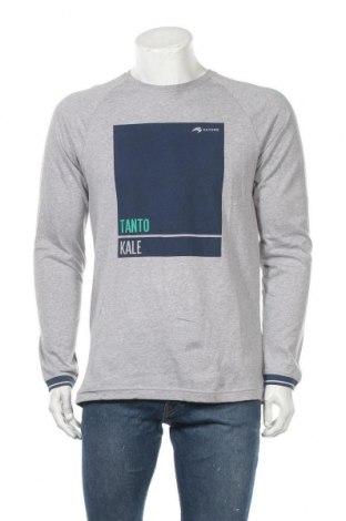 Мъжка блуза Astore, Размер M, Цвят Сив, Памук, Цена 19,11лв.