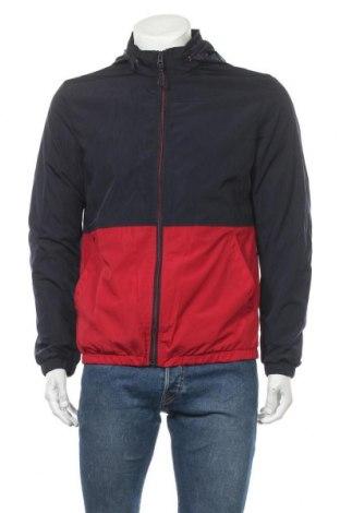 Ανδρικό μπουφάν Springfield, Μέγεθος M, Χρώμα Μπλέ, Πολυεστέρας, Τιμή 19,56€