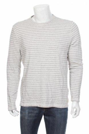 Мъжка блуза Hollister