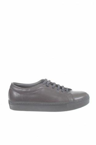 Ανδρικά παπούτσια Paul Hunter