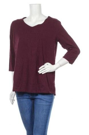Γυναικεία μπλούζα Autograph, Μέγεθος XL, Χρώμα Βιολετί, 95% βαμβάκι, 5% ελαστάνη, Τιμή 8,18€