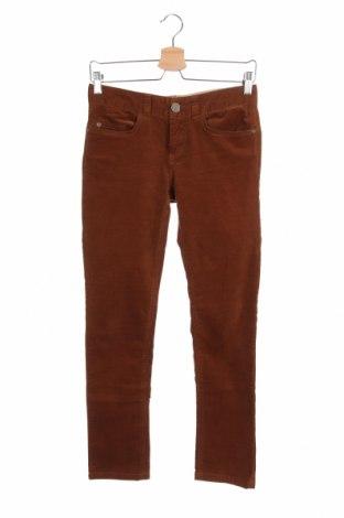 Дамски джинси Stefanel, Размер XS, Цвят Кафяв, 98% памук, 2% еластан, Цена 21,30лв.