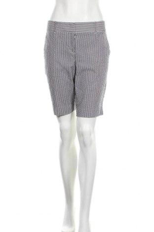 Дамски къс панталон Ann Taylor, Размер M, Цвят Син, 97% памук, 3% еластан, Цена 27,93лв.