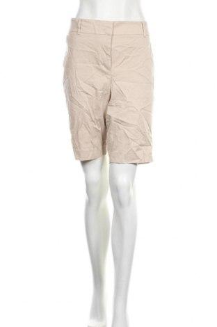 Дамски къс панталон Ann Taylor, Размер XL, Цвят Бежов, 98% памук, 2% еластан, Цена 31,92лв.