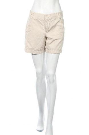Дамски къс панталон Ann Taylor, Размер M, Цвят Бежов, Памук, Цена 37,80лв.