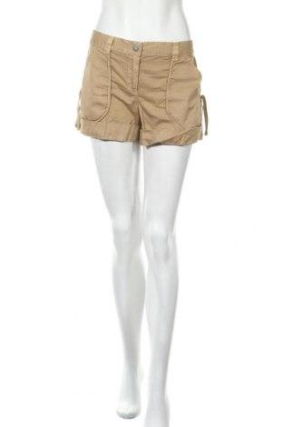 Дамски къс панталон Armani Exchange, Размер M, Цвят Кафяв, Памук, Цена 39,90лв.