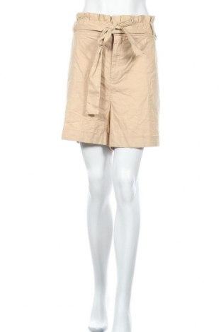Дамски къс панталон Ava & Viv, Размер XXL, Цвят Бежов, 74% памук, 24% лен, 2% еластан, Цена 27,93лв.