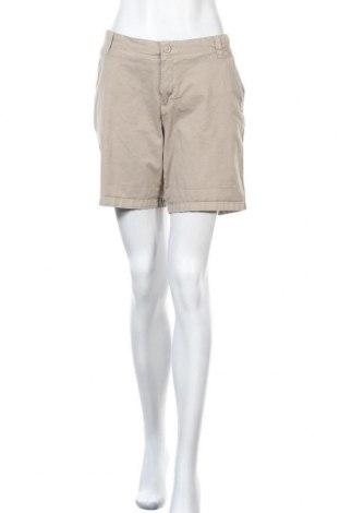 Γυναικείο κοντό παντελόνι Charles Vogele, Μέγεθος XL, Χρώμα  Μπέζ, 98% βαμβάκι, 2% ελαστάνη, Τιμή 13,58€