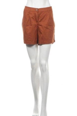 Дамски къс панталон Colours Of The World, Размер XL, Цвят Кафяв, Памук, Цена 16,96лв.