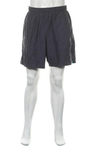 Мъжки къс панталон Speedo, Размер L, Цвят Син, Полиестер, Цена 20,79лв.