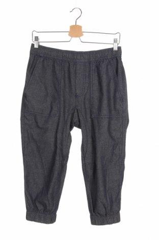 Мъжки панталон American Rag Cie, Размер S, Цвят Син, Памук, Цена 19,32лв.