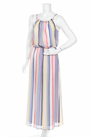Šaty  Dorothy Perkins, Velikost M, Barva Vícebarevné, Cena  434,00Kč