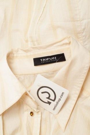 Γυναικείο πουκάμισο Taifun, Μέγεθος L, Χρώμα  Μπέζ, 64% βαμβάκι, 33% πολυαμίδη, 3% ελαστάνη, Τιμή 14,43€