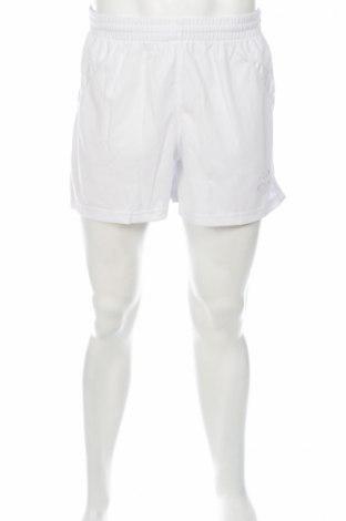 Pantaloni scurți de bărbați Kelme