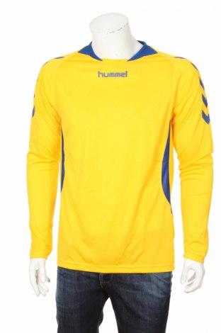 Мъжка спортна блуза Hummel