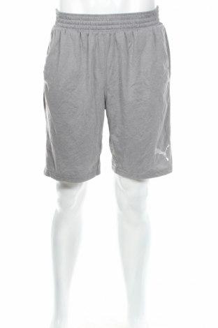 Мъжки къс панталон PUMA, Размер L, Цвят Сив, Памук, Цена 23,63лв.