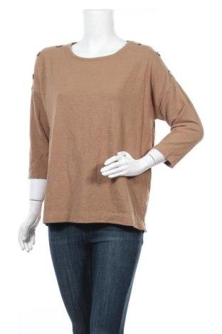 Γυναικεία μπλούζα Suzanne Grae, Μέγεθος M, Χρώμα  Μπέζ, 64% πολυεστέρας, 33% βαμβάκι, 3% ελαστάνη, Τιμή 9,38€