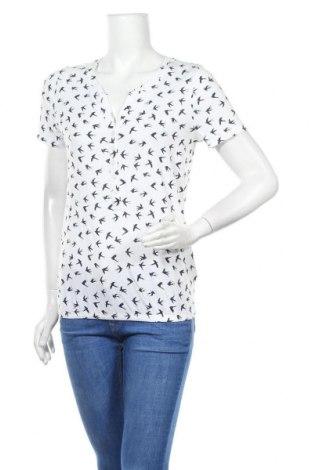 Γυναικεία μπλούζα Tom Tailor, Μέγεθος XS, Χρώμα Λευκό, 50% βαμβάκι, 50% μοντάλ, Τιμή 5,05€