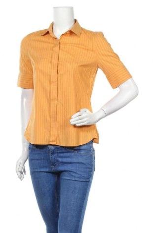 Дамска риза Rene Lezard, Размер S, Цвят Жълт, 70% памук, 23% полиамид, 7% еластан, Цена 31,50лв.