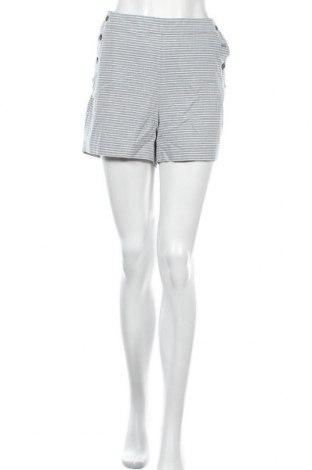 Γυναικείο κοντό παντελόνι Banana Republic, Μέγεθος XL, Χρώμα Μπλέ, Βαμβάκι, Τιμή 42,57€