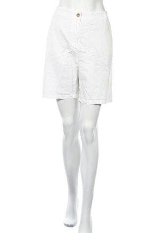 Γυναικείο κοντό παντελόνι Suzanne Grae, Μέγεθος XL, Χρώμα Λευκό, Βαμβάκι, Τιμή 12,28€