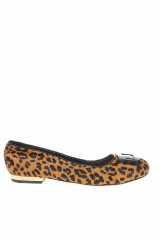 Дамски обувки Hush Puppies, Размер 38, Цвят Многоцветен, Естествен косъм, Цена 38,85лв.