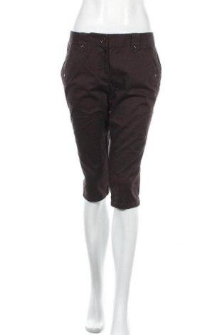 Дамски панталон Ann Taylor, Размер S, Цвят Кафяв, 97% памук, 3% еластан, Цена 28,35лв.
