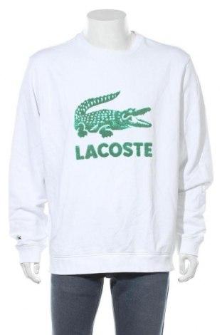 Ανδρική μπλούζα Lacoste, Μέγεθος 3XL, Χρώμα Λευκό, 87% βαμβάκι, 13% πολυεστέρας, Τιμή 36,52€