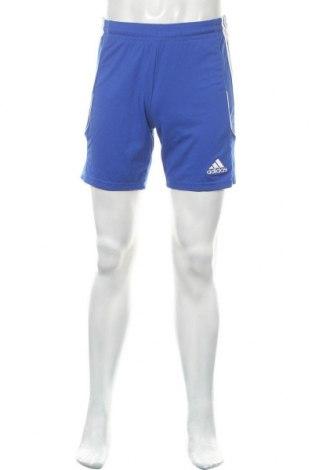Ανδρικό κοντό παντελόνι Adidas, Μέγεθος S, Χρώμα Μπλέ, Πολυεστέρας, Τιμή 12,99€
