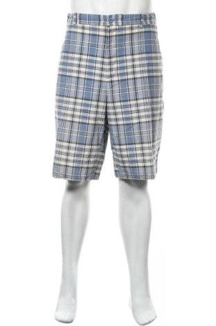 Мъжки къс панталон Cernold Palmer, Размер XXL, Цвят Многоцветен, 70% памук, 30% полиестер, Цена 18,90лв.