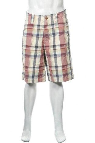 Ανδρικό κοντό παντελόνι Hollister, Μέγεθος M, Χρώμα Πολύχρωμο, Βαμβάκι, Τιμή 14,36€