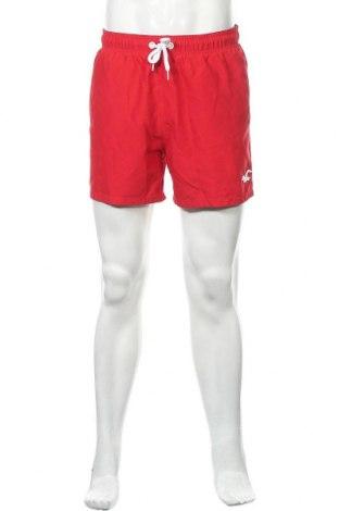 Ανδρικό κοντό παντελόνι Hollister, Μέγεθος L, Χρώμα Κόκκινο, Τιμή 12,34€