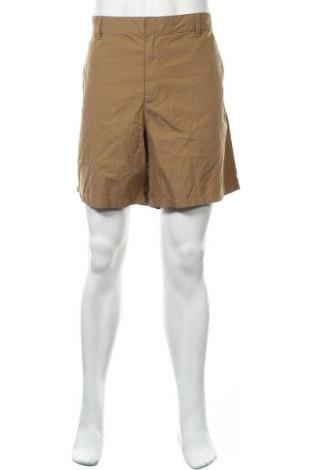 Мъжки къс панталон Route 66, Размер XXL, Цвят Кафяв, Памук, Цена 6,93лв.