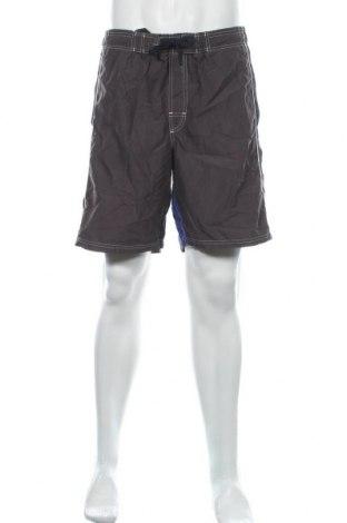 Мъжки къс панталон Speedo, Размер XL, Цвят Сив, Цена 18,95лв.