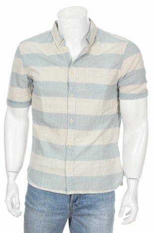Pánska košeľa  Allsaints