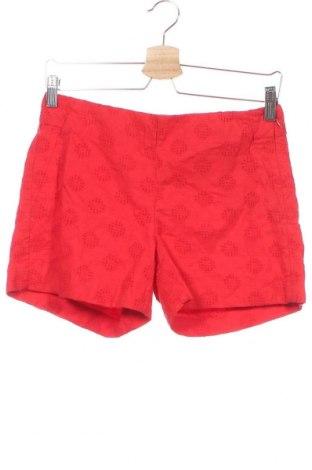 Γυναικείο κοντό παντελόνι Banana Republic, Μέγεθος XS, Χρώμα Κόκκινο, Βαμβάκι, Τιμή 48,74€