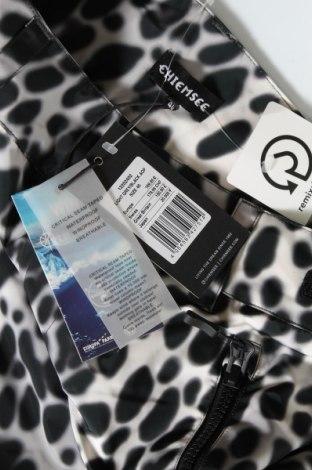 Дамски панталон за зимни спортове Chiemsee, Размер M, Цвят Черен, Полиестер, Цена 112,05лв.