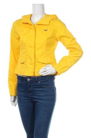 Γυναικείο μπουφάν Hollister, Μέγεθος M, Χρώμα Κίτρινο, 75% βαμβάκι, 25% πολυαμίδη, Τιμή 24,03€