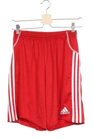 Детски къс панталон Adidas, Размер 15-18y/ 170-176 см, Цвят Червен, Полиестер, Цена 21,95лв.