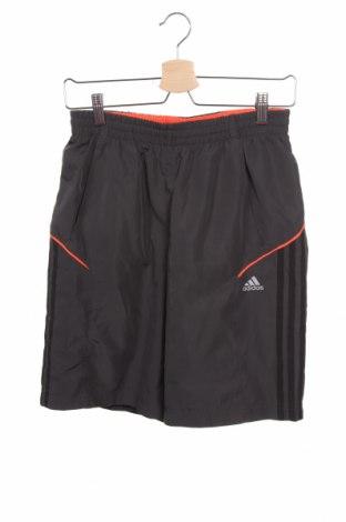 Детски къс панталон Adidas, Размер 15-18y/ 170-176 см, Цвят Сив, Полиестер, Цена 25,94лв.
