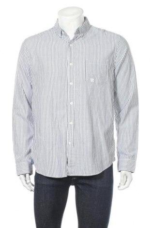 Мъжка риза Express, Размер L, Цвят Син, Памук, Цена 9,98лв.