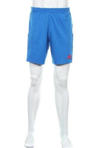 Мъжки къс панталон Adidas, Размер M, Цвят Син, Полиестер, Цена 28,35лв.