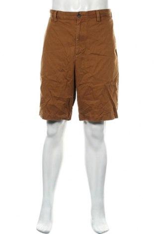 Ανδρικό κοντό παντελόνι Banana Republic, Μέγεθος XL, Χρώμα Καφέ, Βαμβάκι, Τιμή 20,98€