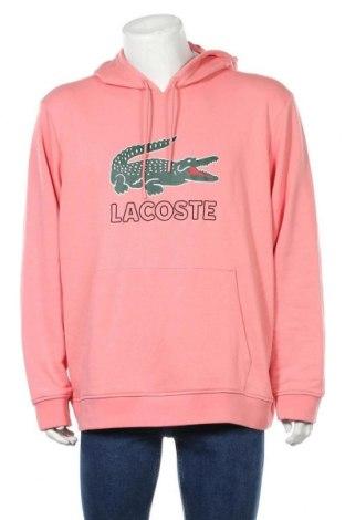 Ανδρικό φούτερ Lacoste, Μέγεθος 3XL, Χρώμα Ρόζ , 87% βαμβάκι, 13% πολυεστέρας, Τιμή 57,37€