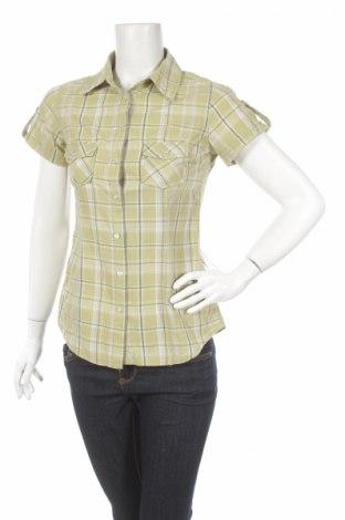 Γυναικείο πουκάμισο Colours Of The World, Μέγεθος S, Χρώμα Πράσινο, Βαμβάκι, Τιμή 9,28€